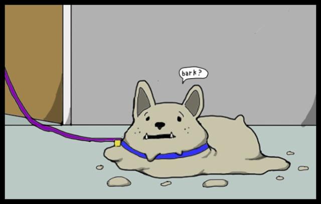 doggy4